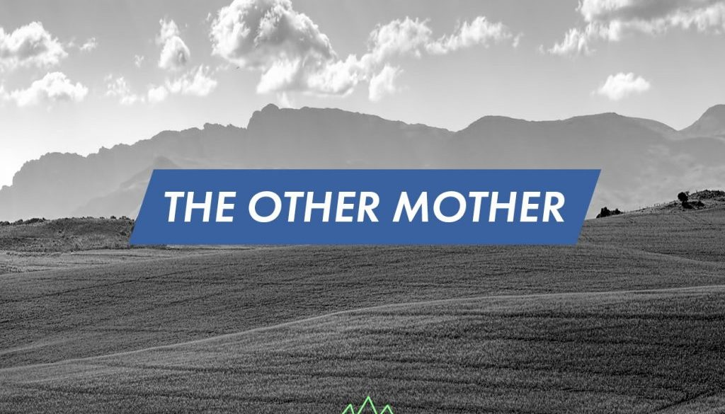 The Other Mother- Rachel Calland