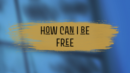 How can I be free - Rachel Calland